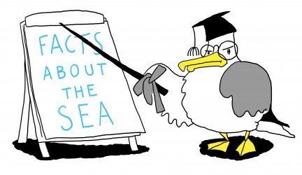 Sea Change - Increasing Ocean Literacy - Facts about the Sea