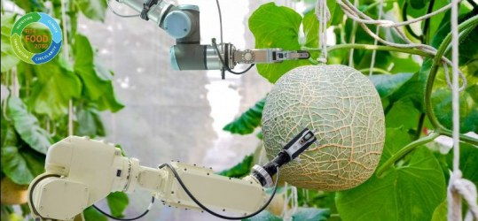 Image showing a robotic arm picking fruit