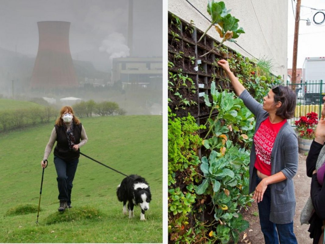 """Dog Walk by Power Station"" (Left) Image Credit: Dave Bagnall / Alamy. ""Vertical Garden"" (Right) Image Credit: Peter Bennett / Citizen of the Planet / Alamy Stock Photo"