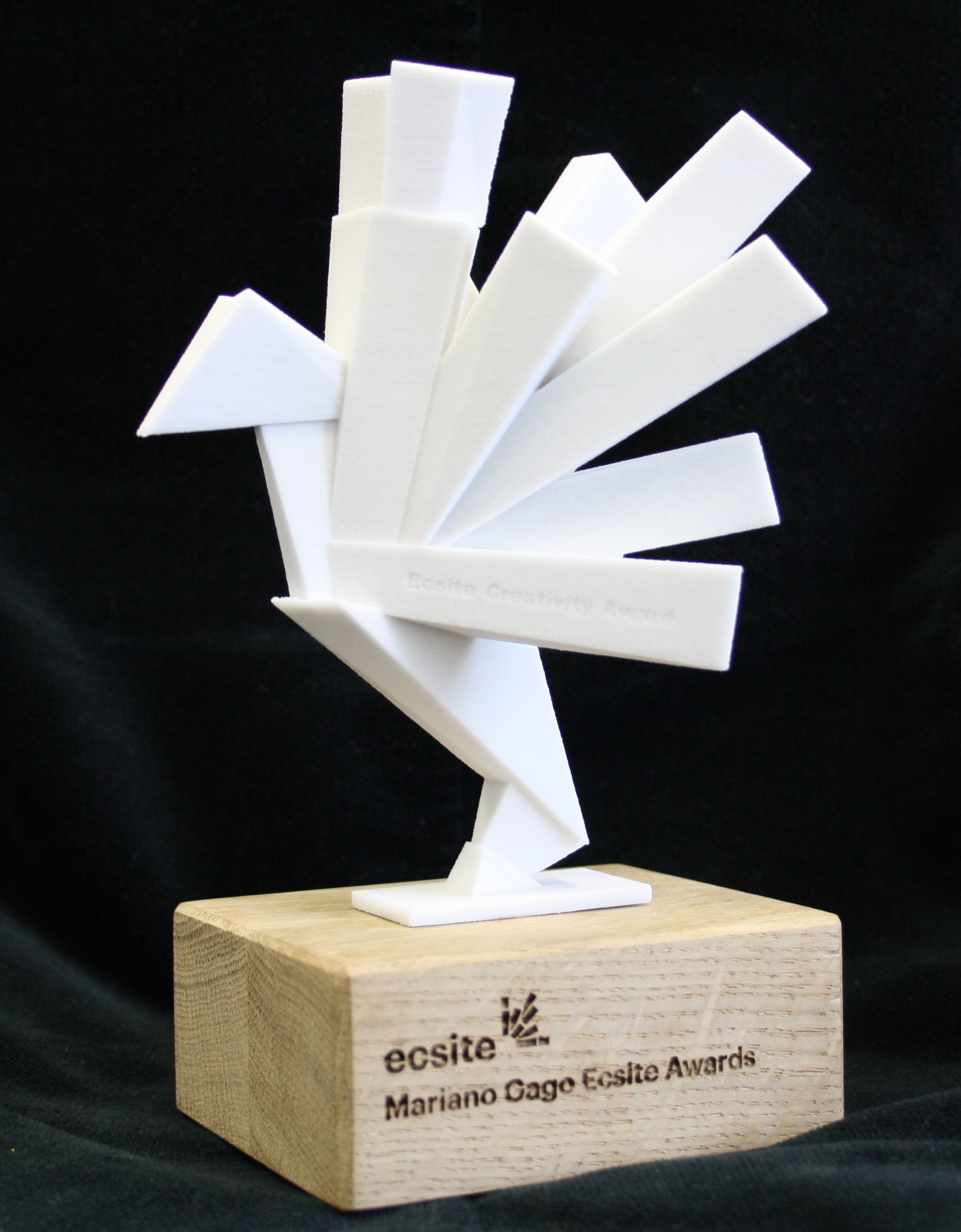 #EcsiteAwards trophy