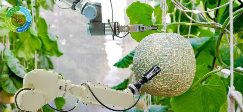 Image showing a robotic arm picking fruit