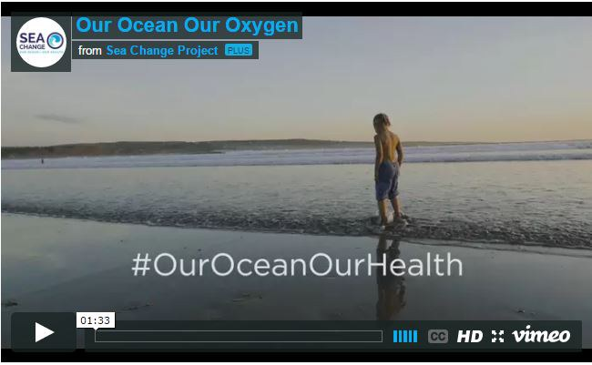 """Our Ocean, Our Health"" video, Sea Change project"