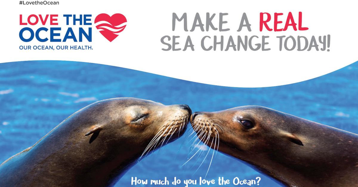#LoveTheOcean - Make a Real Sea Change Today