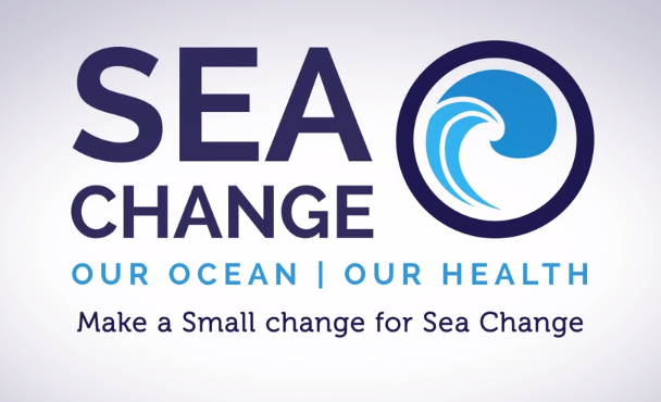 Sea Change video