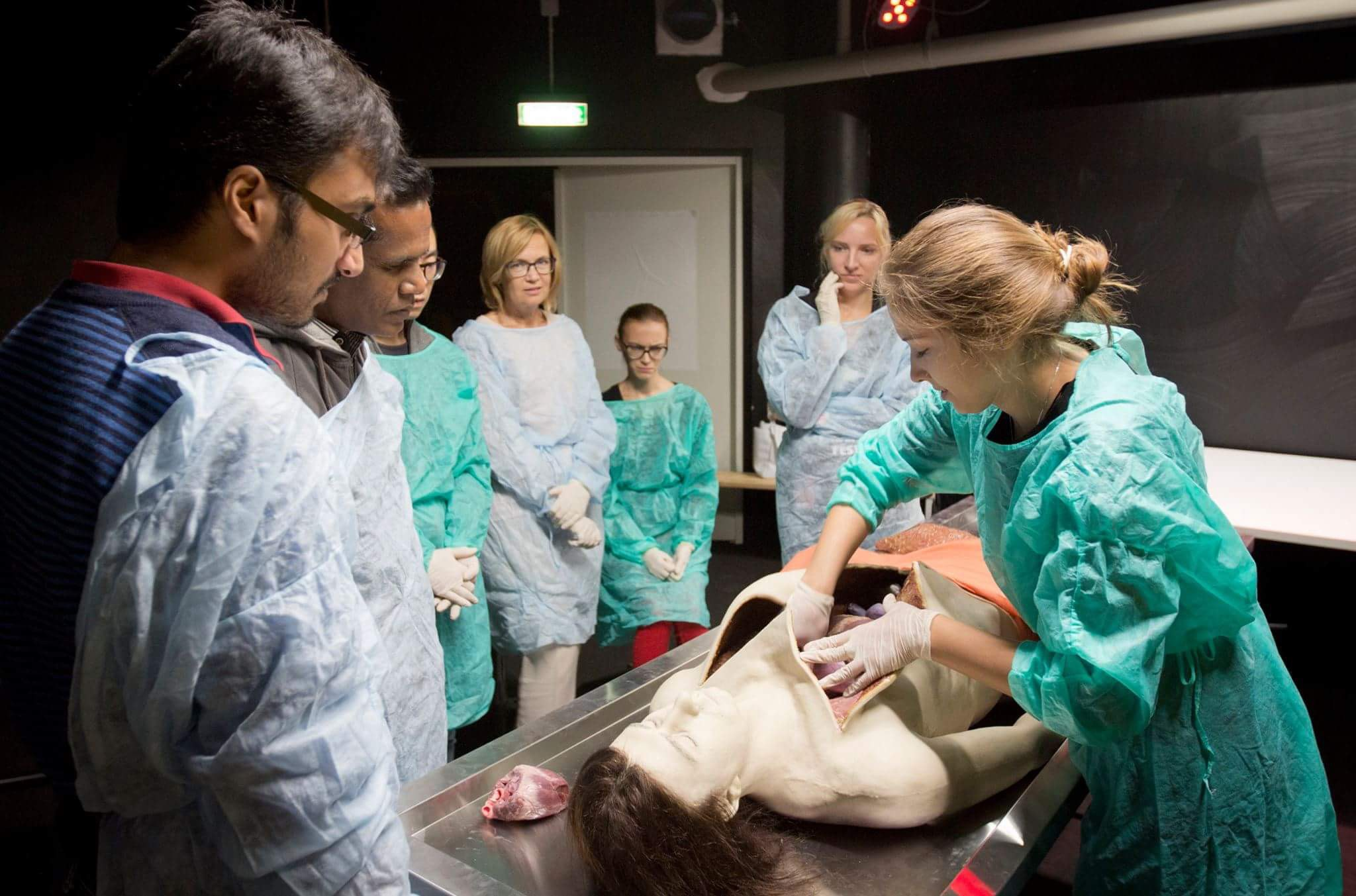 Life-sized and lifelike autopsy doll for a hands-on necropsy demonstration featuring also some real (pigs') organs