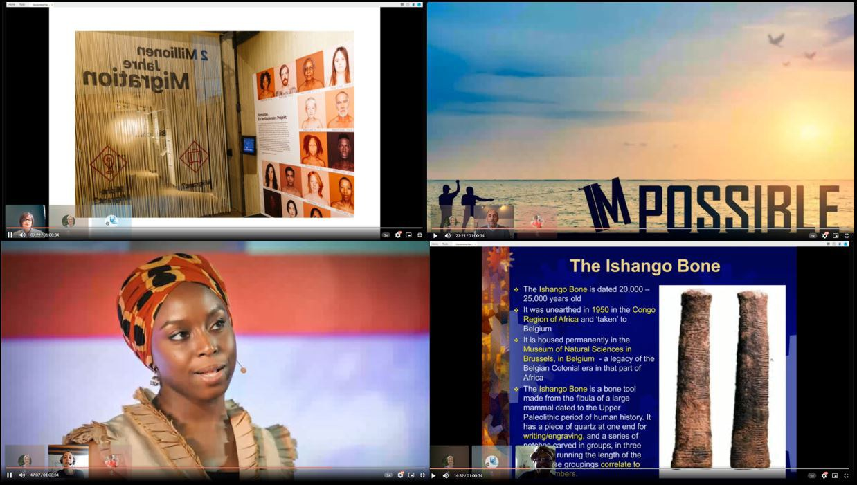 Slides from the webinar on Decolonising museums and science communication