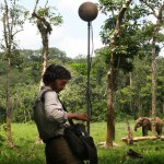 Fragments of Extinction recording threatened primary forest soundscapes