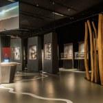 SH_KCUS_MuseumsPartner_Schelfhout