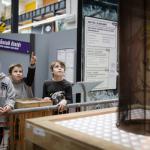 Exhibition C-Team, Techmania Science Center, Pilsen