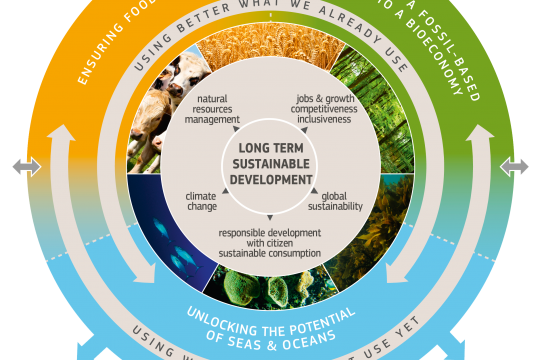 bioeconomy strategy graphic