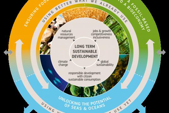 bioeconomy strategy graphic