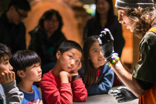 An Explainer at Exploratorium shares a dissecting cow eyeball with visitors