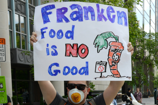 March Against Monsanto, Washington DC, USA, 24 May 2014.