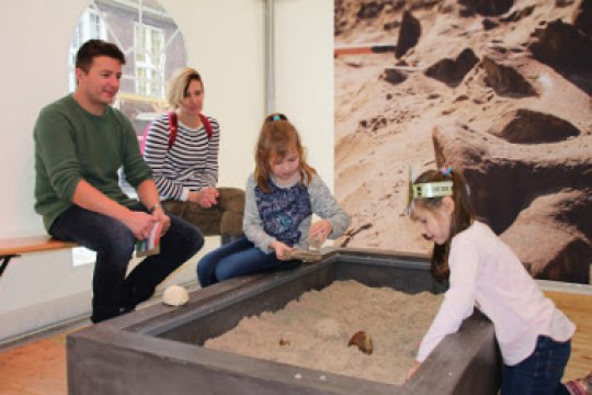 """Figure 1: Family interacting with real objects during """"Digging in the dinosaur era"""" workshop activity at Naturalis Biodiversity Center."""