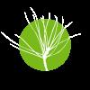 Associação Centro Ciência Viva De Proença-A-Nova