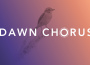 The Dawn Chorus initiative